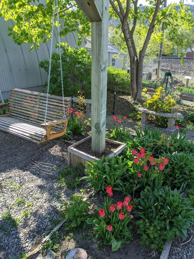 tulips beside a porch swing
